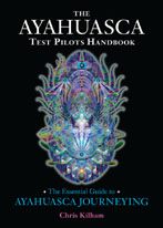 The Ayahuasca Test Pilots Handbook