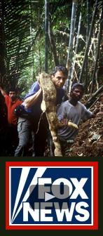 Watch Malaysia's True Aphrodisiac on Fox